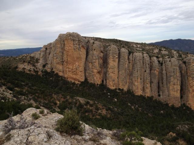 De machos en Teruel Lafoto-1
