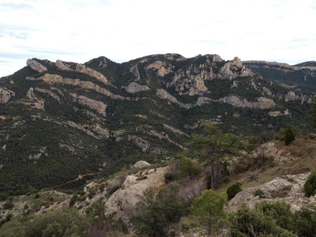 De machos en Teruel Lafoto3