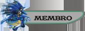 Regras de Staff Membro-3