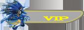 Regras de Staff Vip-3
