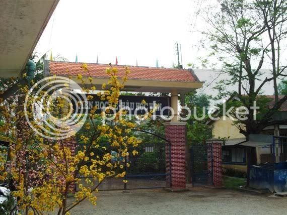 Trường RK hoa nở 4 mùa Hihn2