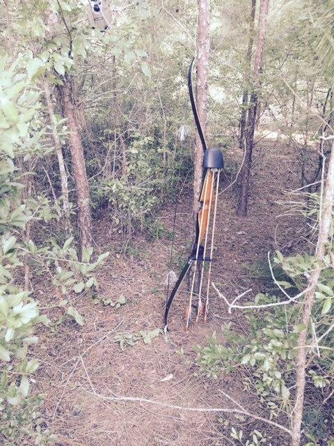 Coyote hunting with a recurve Recurve%20bow_zps6bgv8kke