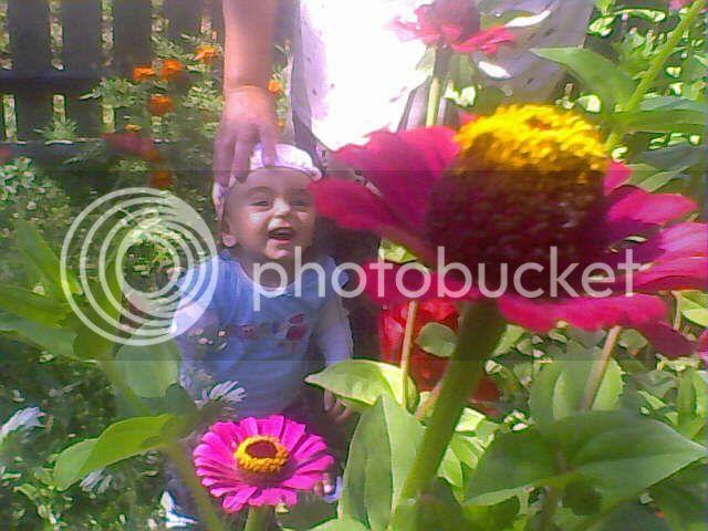poze cu plantele mele de ghiveci ! - Pagina 4 03-09-08_112838