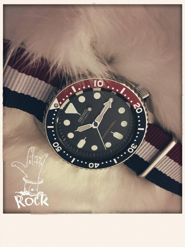 Votre montre du jour - Page 18 31C02547-6712-457A-A937-AA99451525C9_zpswr4z3hha