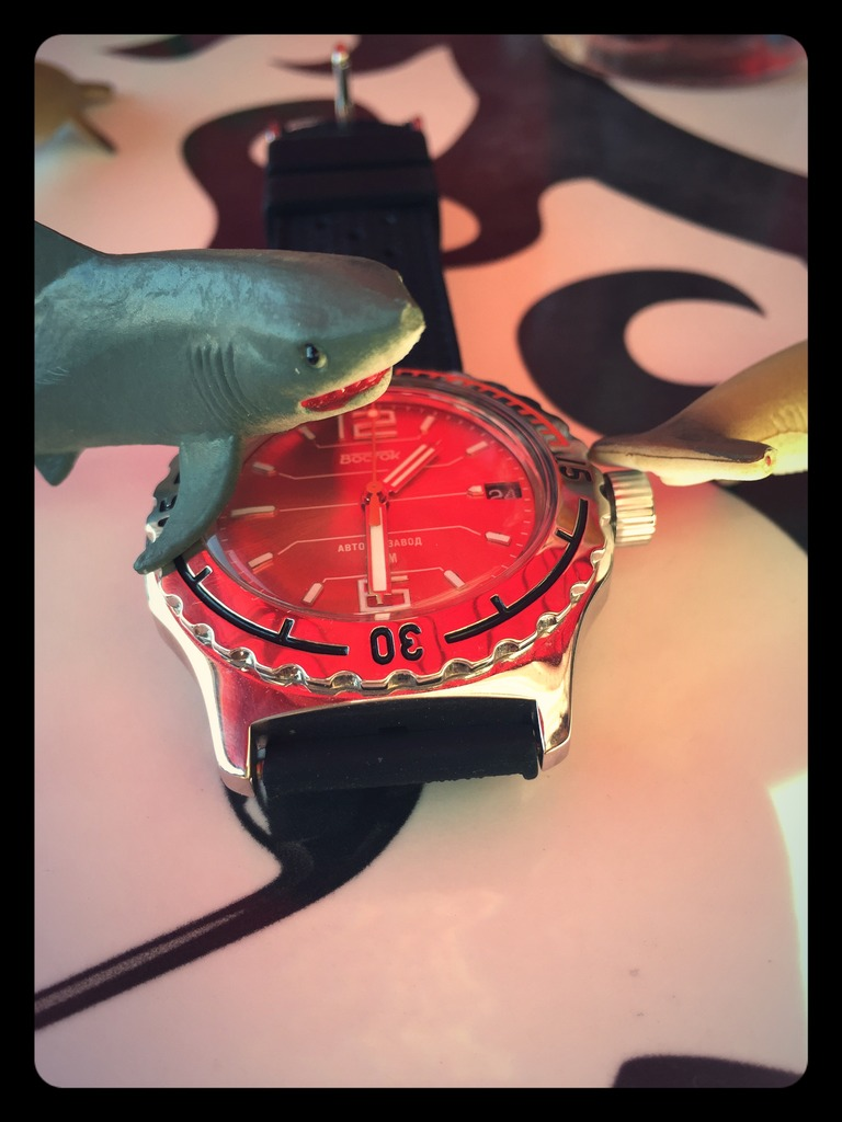 Votre montre du jour - Page 5 97F62314-3DEC-4D4E-A1A1-674D6E5CC15C_zpsfttknhlu