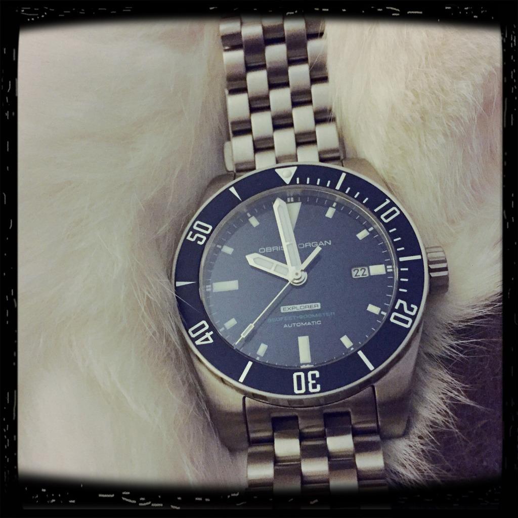 Votre montre du jour - Page 2 A4A683F0-F7F7-40C8-9A1A-7A3C3D996DBA_zpsxkz1wftc