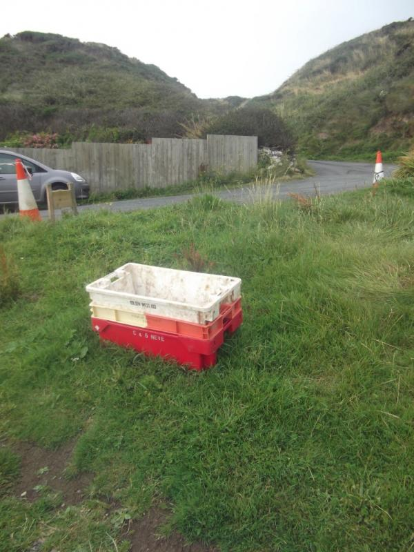 Potty crates Niarbyl CF4990_zps36394a92