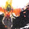 Hikaru's blades Wakaalone