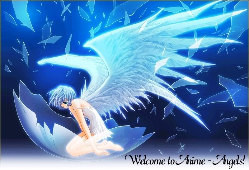 Choosen Wing ,The Angels Anime-angel