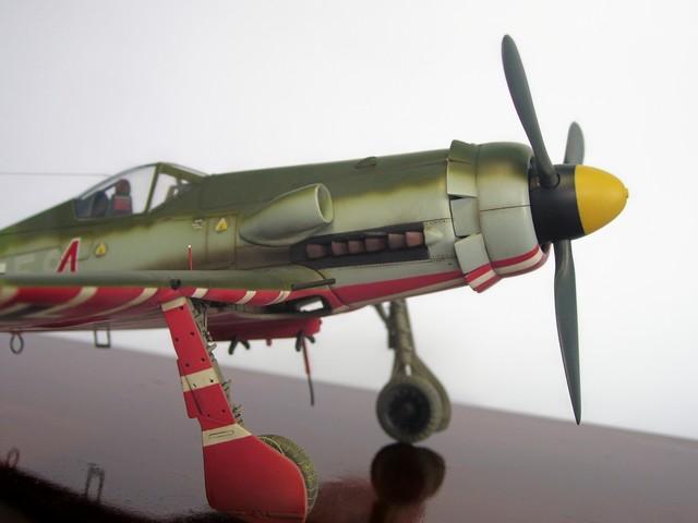 Focke Wulf 190 D-11, Revell 1/48 (Molde de Trimaster). FW190D-11Terminado%2014_zpsjjudzt0g