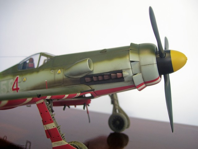 Focke Wulf 190 D-11, Revell 1/48 (Molde de Trimaster). FW190D-11Terminado%2016_zps0l5s8mhq