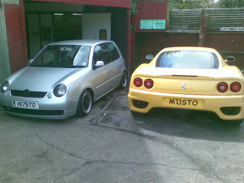 FOR SALE,  The Lupo  Image01