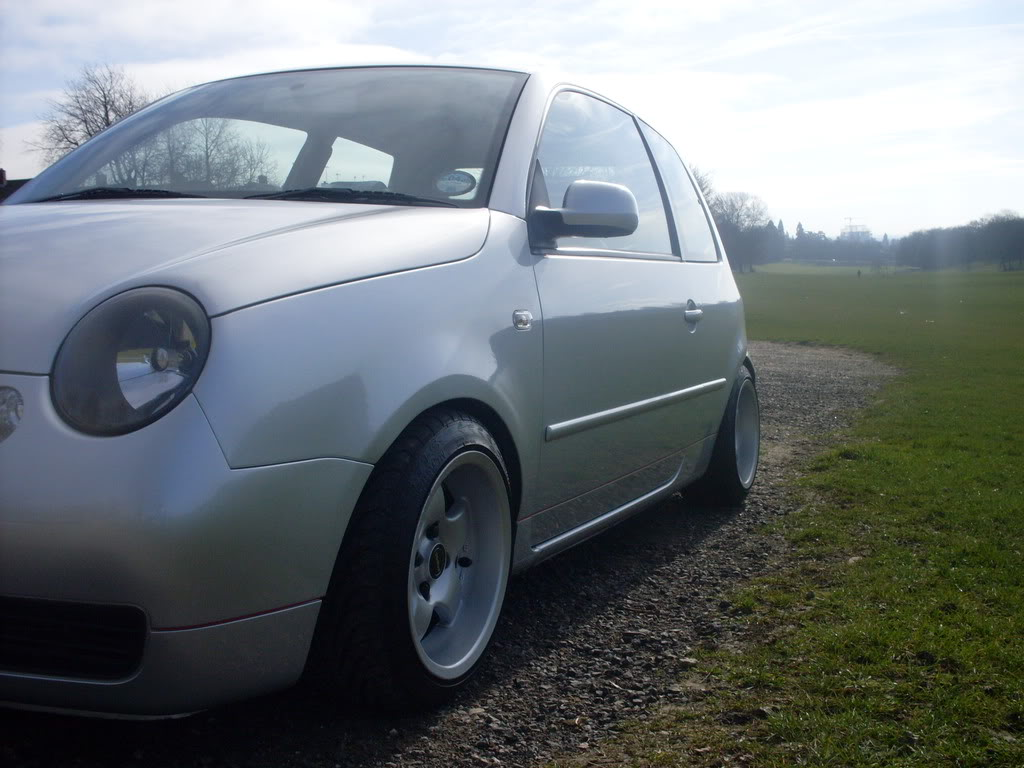 FOR SALE,  The Lupo  - Page 3 SDC10177