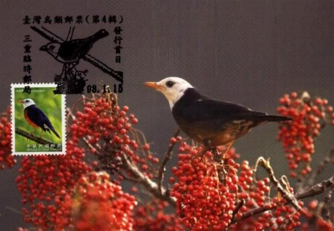 Republic of China (Taiwan) 2010 Maxicards TWN_20090115_MC02D
