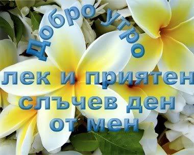 Картинки за добро утро, слънчев ден и приятна вечер Img_164633_806861_l1