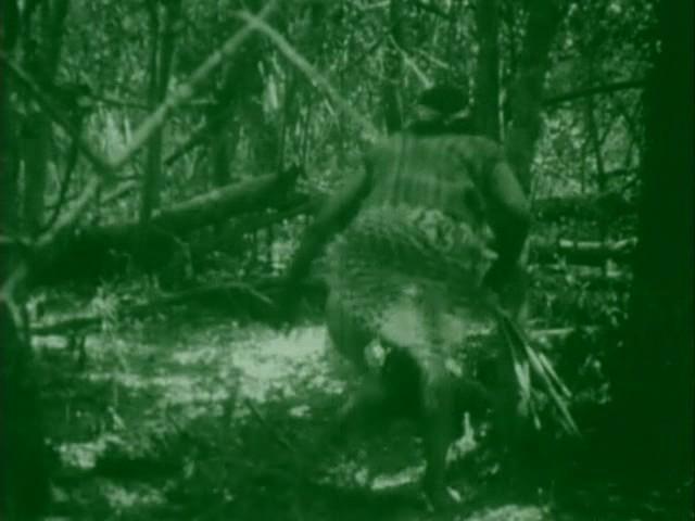 Последняя атака / El ultimo malon / The Last Indian Attack (Аргентина, 1917) 880c2f35e25a8588dc3e461815b8e93a