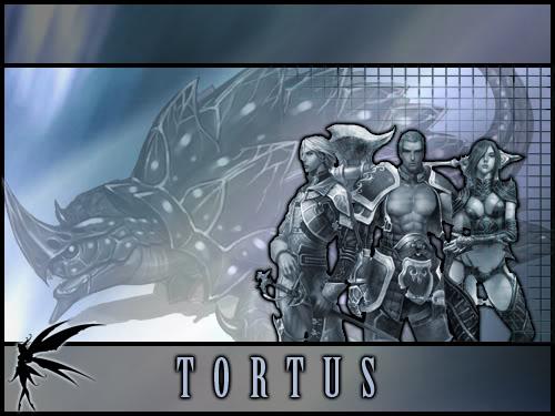 Tortus Banner Concepts TortusBanner001