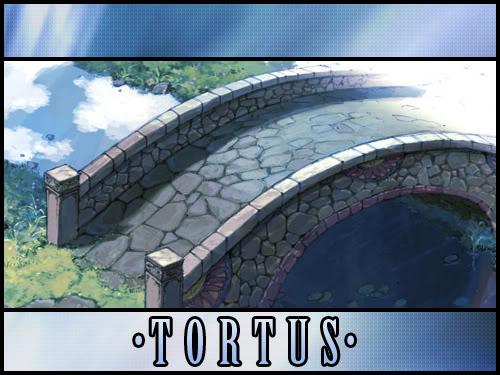 Tortus Banner Concepts TortusBanner002