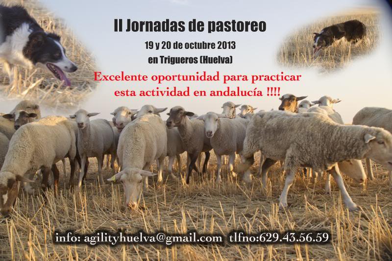 Agility Huelva - Portal Cartelpastoreo