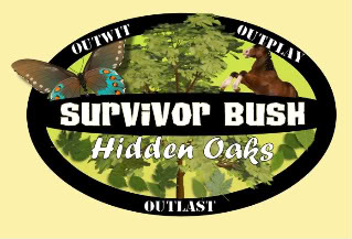 The Survivor: Bush Plaza