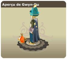 Gwyn-Du - Pandawa feu niveau 113 aux sorts Gwyn-113_look