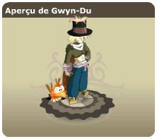 Gwyn-Du - Pandawa feu niveau 113 aux sorts Gwyn_aperu