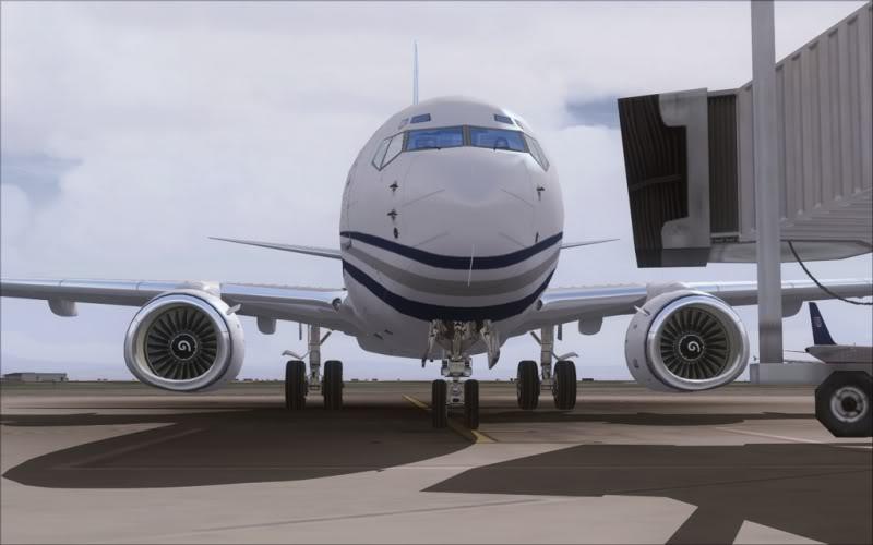 [FS9] Um belo 737-700 executivo SpeedRacer_218