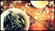 White Lotus Tea House