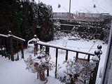 November Snow Th_DSCF0472