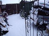 November Snow Th_DSCF0475