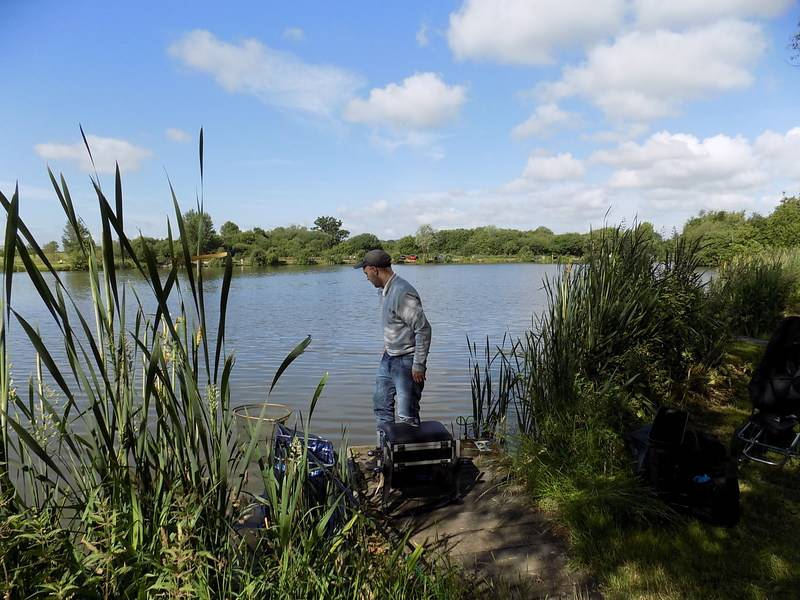 4th bye , barston main lake  27/6/15 Barst37_zpsbnbtwejl