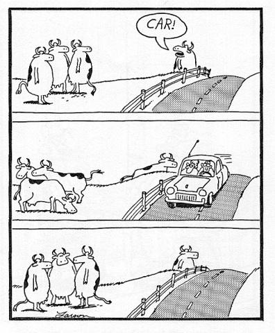 Post your favorite Far Side cartoon 17_cows_CAR__zps0205bba5