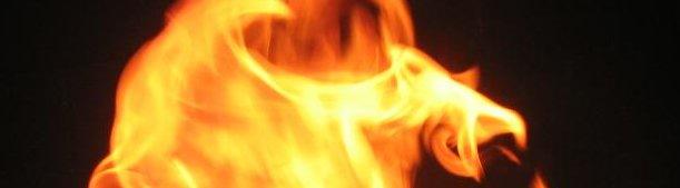 Flamme du phoenix