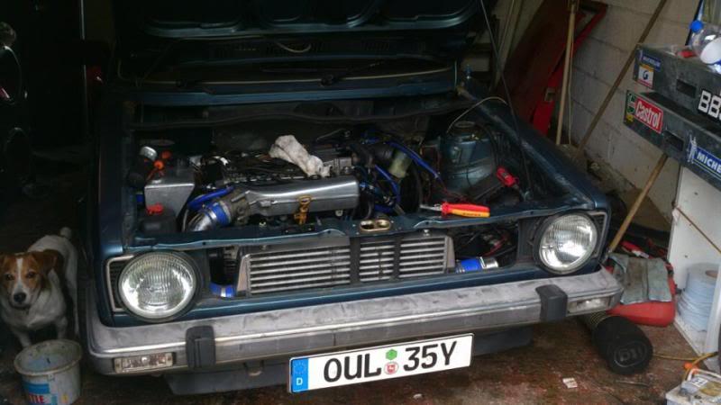 1982 Mk1 Golf GL+ 558763_10150979437647723_95966502_n