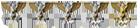 Líder Sección y competitivo Battlefield 1