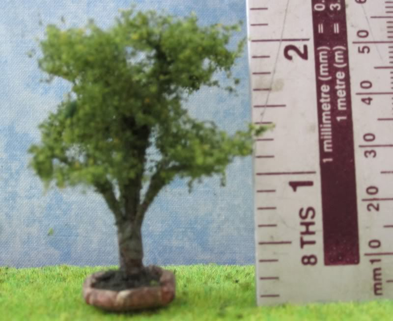 144th garden tree 1325s