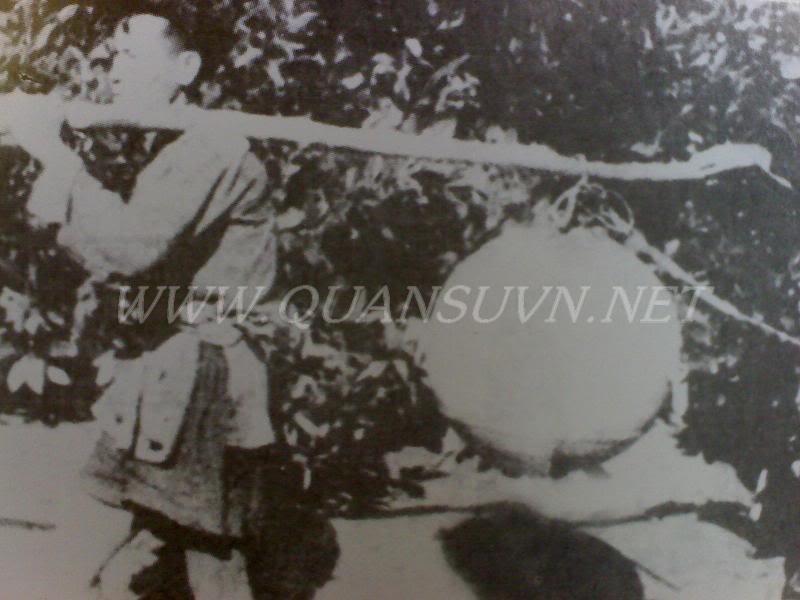 Vũ khí Việt Nam trong 2 cuộc kháng chiến Thuyloitutao