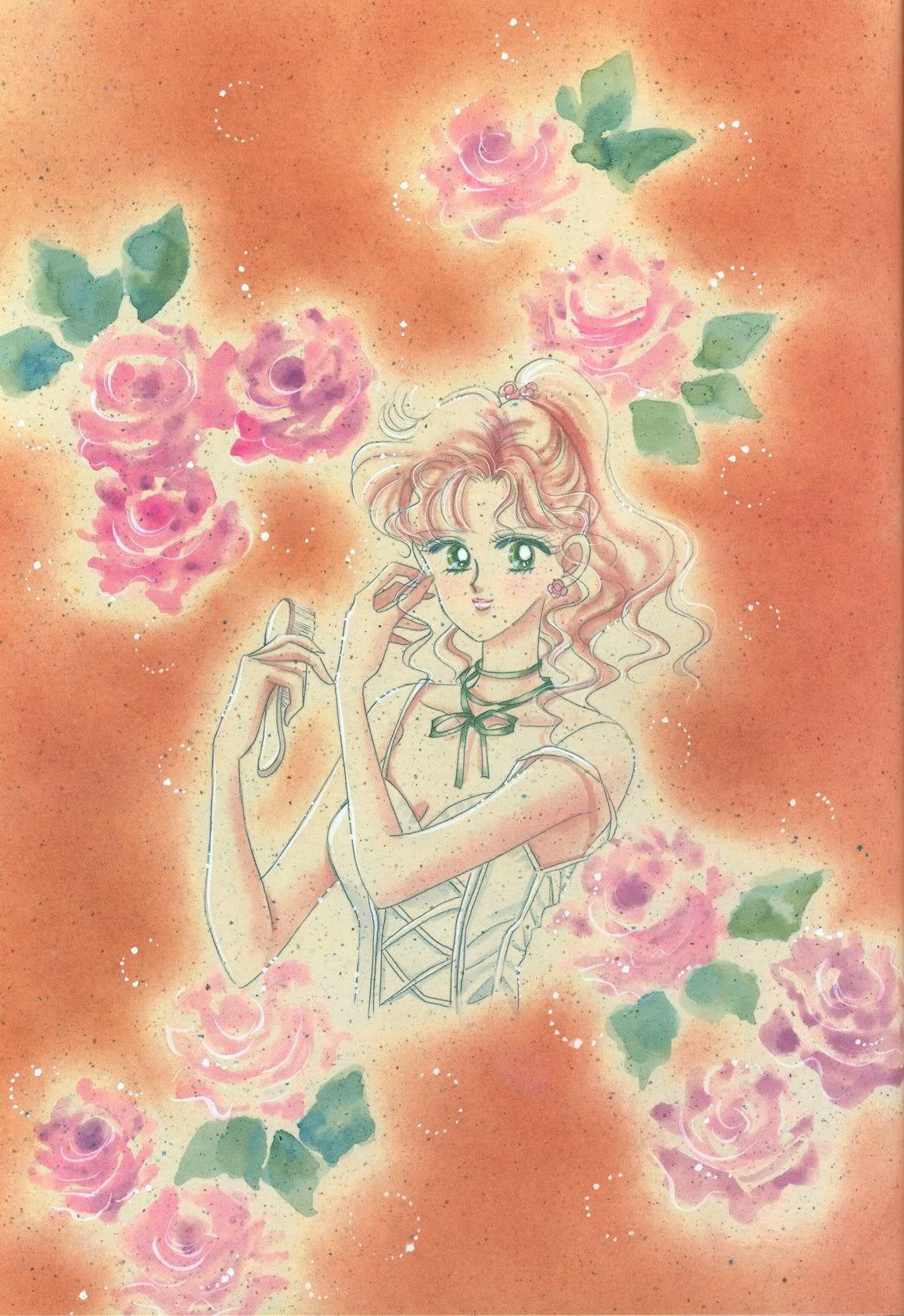 Sailor Jupiter/Makoto Kino Gallery 028