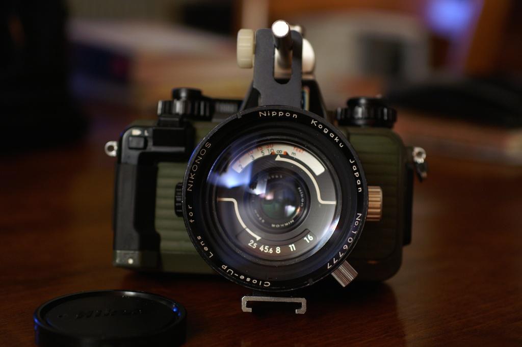 Kit macro Nikonos  PICT0069_zps081e3fb8