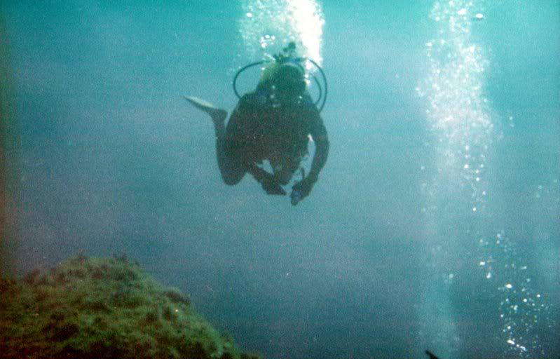 MARINE - Débuter en photo sous-marine : vos conseils Cassis_i_010