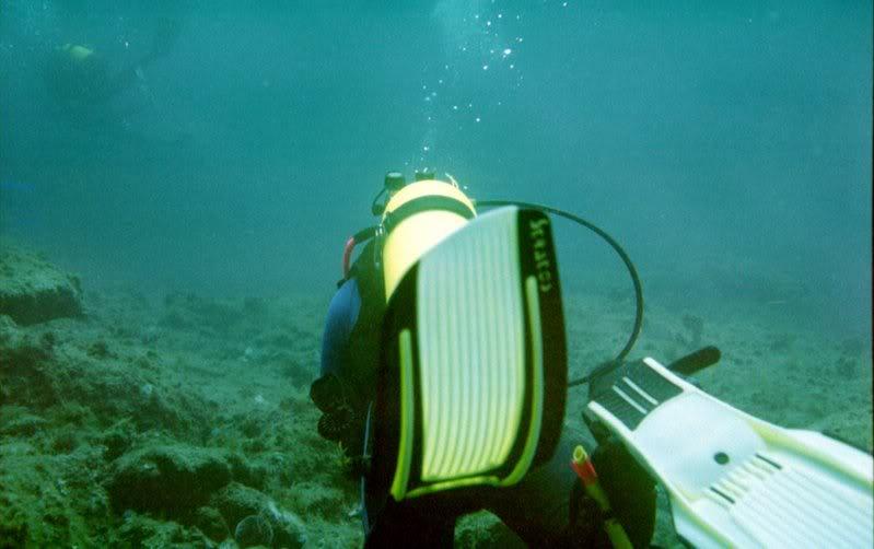 MARINE - Débuter en photo sous-marine : vos conseils Cassis_i_011