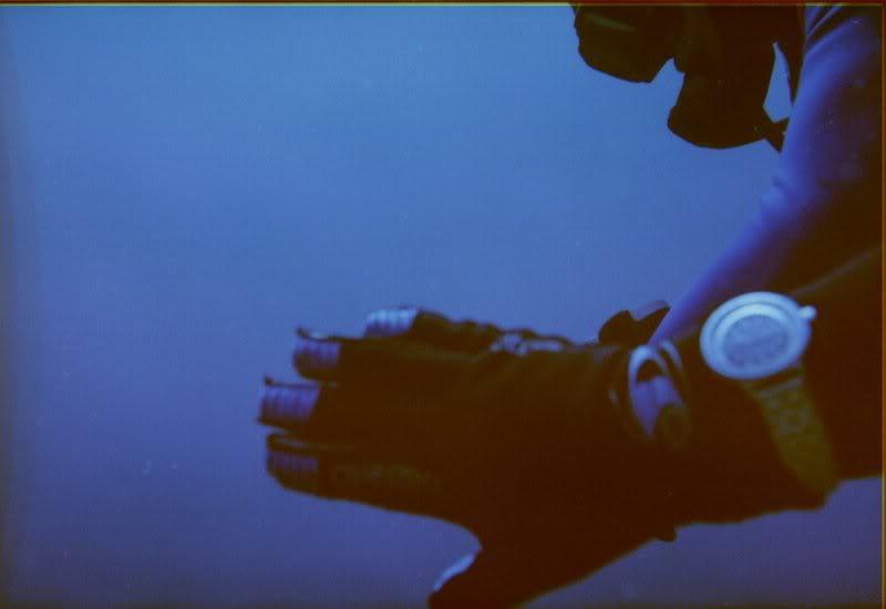 MARINE - Débuter en photo sous-marine : vos conseils Cassis_i_017