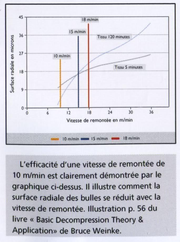Paramètres de plongée Suunto (II) : saturation -désaturation Saturation_003