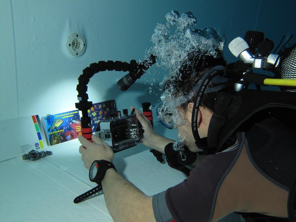 MARINE - Débuter en photo sous-marine : vos conseils IMG_2998_zps9814856d