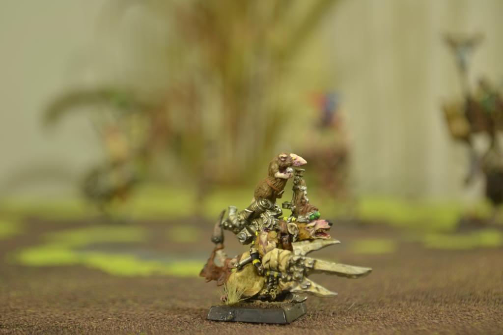 Ejército de  Ratly DSC_0008_zps3fa9ad3a
