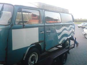 bluebell DSC00006