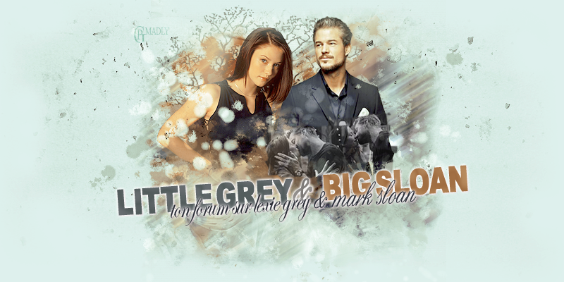 Lexie and Mark forum : Little Grey and Big Sloan Header