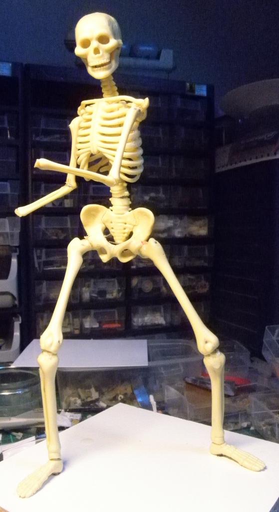 Zombie Squeletteface_zps3129e73b