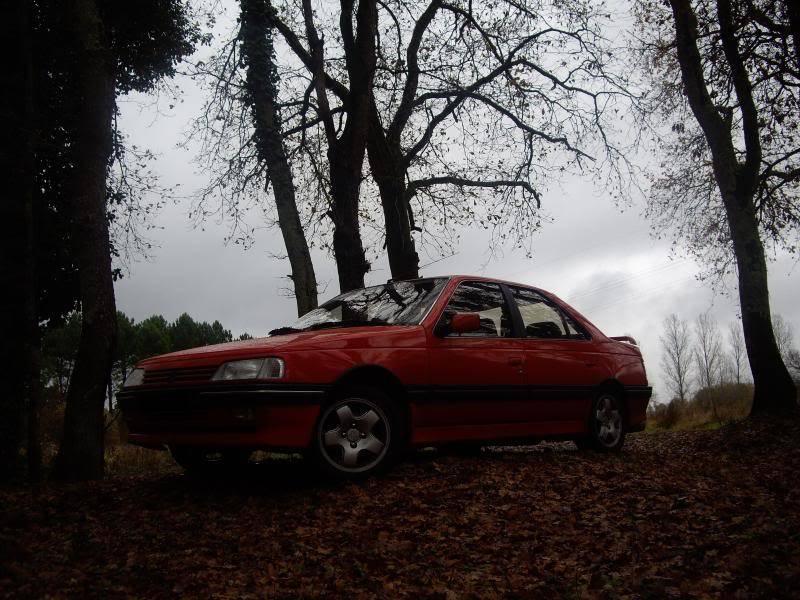 Daredevil dans les bois...23-11-08 IMGP8205