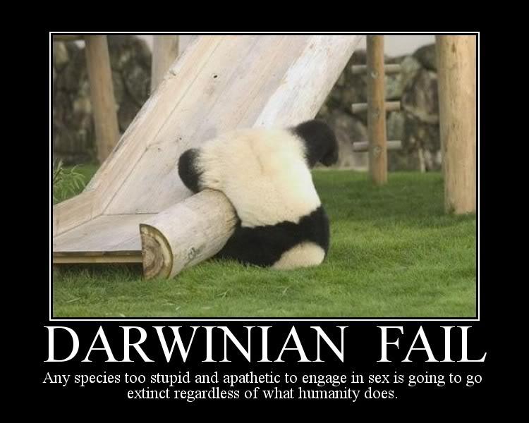 ADN1m1mm1 PDPDDPDPDPD - Page 4 DarwinianFailPanda--MotivationalPos
